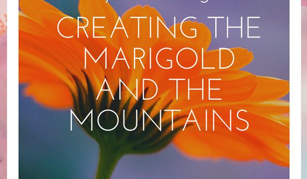 marigold photo for blog post pin about my new logo by Jane Mucklow Photography