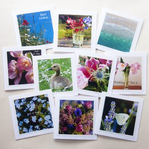 Keeping in Touch Card Collection - set of ten mixed photographs on greetings cards, by Jane Mucklow