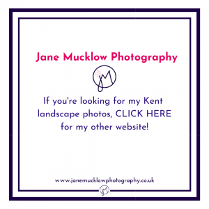 website button title for Jane Mucklow Photography website