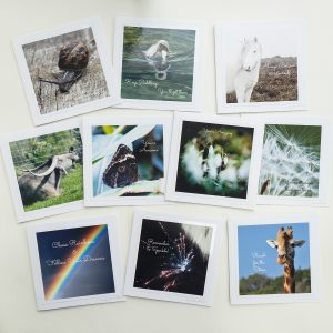 Photo of ten uplifting greetings cards by Jane Mucklow Photography