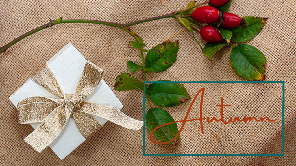 Photo of a gift box and rose hips on a hessian background, by Jane Mucklow, example of an Autumn season style for a blog on an introduction to seasonal colour theory for brands