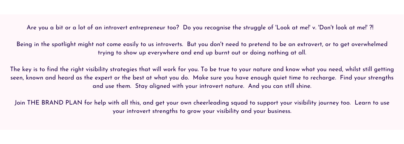 Text about being an introvert to get visible and grow your business for The Brand Plan by Jane Mucklow Picture Your Brand