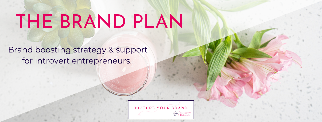 The Brand Plan title image Jane Mucklow Picture Your Brand membership programme