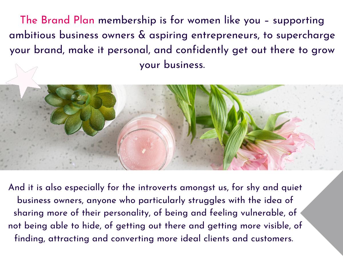 The Brand Plan membership info graphic 3